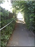 SO9096 : Coton Road Path by Gordon Griffiths