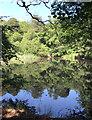SU9664 : Round Pond by Des Blenkinsopp