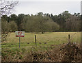 TL8296 : Grassland in STANTA by Hugh Venables
