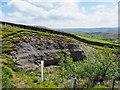 NY8603 : Rock exposure alongside Pryclose Gutter by Trevor Littlewood