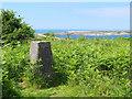 SD1878 : Trig Pillar at Hodbarrow Point (S5454) by Gary Rogers