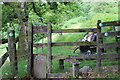SO1805 : Stile into Silent Valley Local Nature Reserve by M J Roscoe
