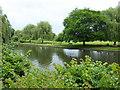 SP2054 : River Avon near Trinity Church by PAUL FARMER
