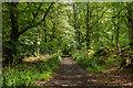 TQ1049 : Drove Road by Ian Capper