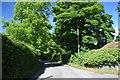 NY0823 : Lane in Mockerin by Trevor Harris