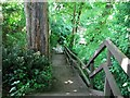 TG2208 : The Plantation Garden - steep steps by Evelyn Simak