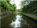 SO9387 : The former Brewins Tunnel, Dudley No 2 Canal by Christine Johnstone