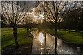SU8612 : River Lavant, West Dean Gardens by Ian Capper