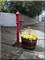 S7350 : Village Pump by kevin higgins