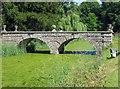 SU8394 : Bridge to an island in West Wycombe Park by Steve Daniels