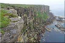 ND2076 : Cliffs at Dunnet Head by Anne Burgess