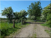 NS3977 : The end of a farm track at Kilmalid by Lairich Rig