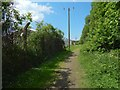 NS3976 : Path to the River Leven by Lairich Rig