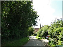 TG2103 : Mangreen Lane, near Swardeston by Adrian S Pye