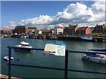 NT6779 : Looking across Victoria Harbour Dunbar by Jennifer Petrie