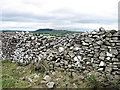 S3767 : Dry Stone Wall by kevin higgins