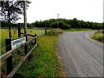 H5672 : Shinnagh Road, Mullaghslin Glebe by Kenneth  Allen
