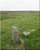 SE1151 : One Upstanding and One Prone Gatepost by Matthew Hatton