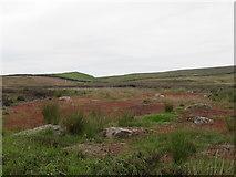 SE1151 : Moorland below Foldshaw Gill by Matthew Hatton