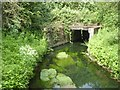 SK4739 : Concrete culvert for Nut Brook by David Lally