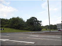 SP0464 : Roundabout on Rough Hill Drive, Redditch by David Howard