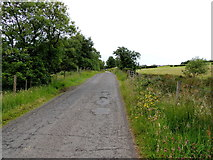 H5672 : Tullyneil Road by Kenneth  Allen