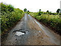 H5571 : Pothole along Roeglen Road by Kenneth  Allen