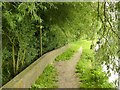 SK4924 : Footpath junction along the River Soar by Alan Murray-Rust
