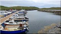 HU3635 : Marina at Hamnavoe by Gordon Brown