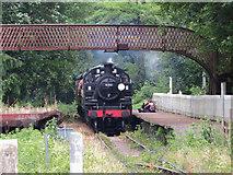 SO6302 : Dean Forest Railway at St. Mary's Halt by Gareth James
