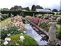SJ7904 : Rose Garden by Gordon Griffiths