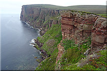 HY1700 : Cliffs of Hoy by Anne Burgess