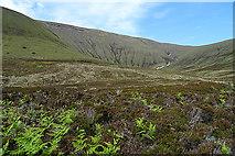 HY2300 : Looking towards Nowt Bield by Anne Burgess