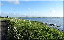 HY2918 : Loch of Harray by Anne Burgess