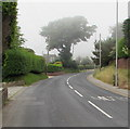 SY3392 : Patchy sea fog, Sidmouth Road, Lyme Regis by Jaggery