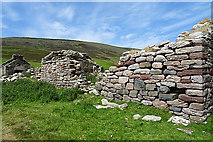ND1999 : Ruins at Rackwick by Anne Burgess