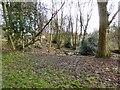 SJ8895 : Brookfield Church graveyard by Gerald England