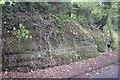 SJ4853 : Wall of the Old Coach Road by Bob Harvey