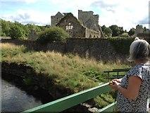 S4943 : Kells Priory, Kilkenny by Eirian Evans