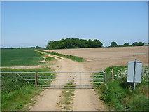 TG0604 : Private track to Brickkiln Grove by Christine Johnstone