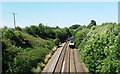 ST0209 : Willand: the Taunton-Exeter line by Martin Bodman