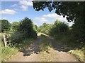 SJ8151 : Farm track near Diglake by Jonathan Hutchins