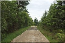 NN1779 : Repaired track, Leanachan Forest by Graham Robson