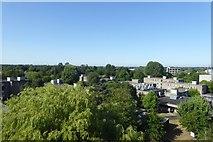 SE6250 : Derwent College from above by DS Pugh