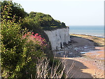 TR4068 : East Cliff, Broadstairs by David Howard