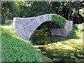 SU8394 : Footbridge over the River Wye in West Wycombe Park by Steve Daniels