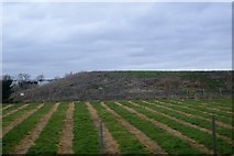 TR0445 : Reservoir embankment by N Chadwick