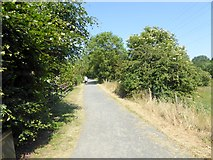 NZ1425 : Railway path at Ramshaw by Oliver Dixon