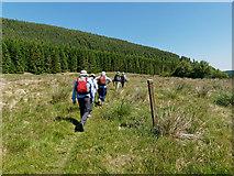 NH6777 : Walking through Strath Rory by Julian Paren