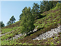 NH6976 : Hillside below Cnoc an Duin Hillfort by Julian Paren